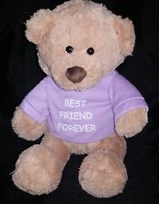 "GUND Best Friends Forever Teddy Bear Plush 12"" Stuffed Animal Gift Purple Shirt"