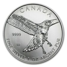 2015 Canadian Red Tailed Hawk Birds of Prey Series 1oz Silver Coin ~ 25 pcs Tube