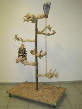 FREISITZ aus Holz Papageienfreisitz JAVA WURZELHOLZ Papageienspielzeug *NEU*
