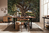 Giant Wall mural photo Wallpaper 366x254cm Olive Tree National Geographic