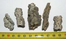 Lot de 5 Fulgurites ( météorite Tectite - 002 )