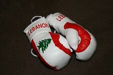 LEBANESE / LEBANON FLAG Mini Boxing Gloves *NEW*