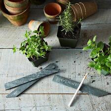 50 Natural Pizarra Garden Bush, marcadores de plantas Etiqueta señaló estacas Hierba De Regalo