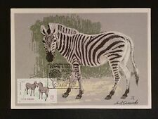 ROMANIA MK 1964 TIERE ZEBRA ZOO MAXIMUMKARTE CARTE MAXIMUM CARD MC CM c8255