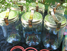 SET OF SIX  Fowlers Vacola  Preserving Jars #31 COMPLETE STANDARD LID RING CLIP
