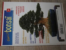 ¤¤ France Bonsaï n°9 Protection Bonsai en hiver Diviser tronc d'un arbre