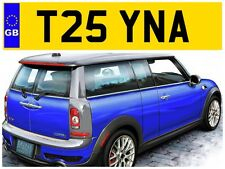 T25 YNA CHRISSY CHRISTINA TINA TINAS TIN CHRISTINAS PRIVATE NUMBER PLATE BEETLE
