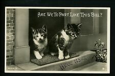 Cat Real Photo Postcard RPPC 2 Kittens on front porch # H.X. 12 Vintage