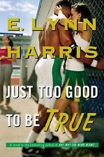 Just Too Good to Be True by E. Lynn Harris (2008, Hardcover)