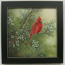 Cardinal Pictures Male Red Bird Framed Country Pictures Prints Bird Pictures