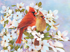 Pencil by Number Kit CARDINALS Birds