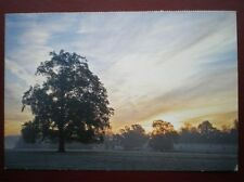 POSTCARD WILTSHIRE CORSHAM - METHUAN PARK - AT SUNSET