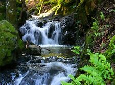 PHOTOGRAPHY LANDSCAPE WATERFALL STREAM CASCADE SCENIC BEAUTIFUL POSTER LV3665