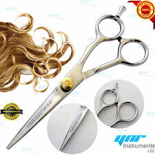 Professionnel Hairdressing Scissors Barber Salon Hair Cutting Cisailles