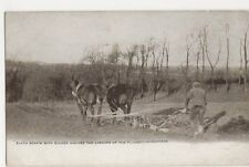 Shire Horses, Ploughing Postcard, B382
