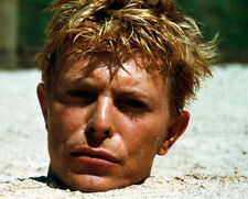 David Bowie ‏ 10x 8 UNSIGNED photo - P155 - Merry Christmas Mr. Lawrence