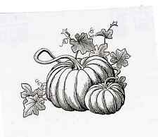 Pumpkin Scene UnMounted rubber Fabulous for Thanksgiving, Harvest  & Fall