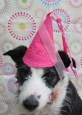 Los Perros De Cumpleaños Sombrero Princesa por un día hecho a mano y personalizado por la señora Picadas
