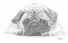 PUG  dog Limited Edition art drawing print signed by UK artist