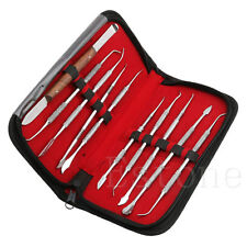 Hot 10Pcs/Set Stainless Steel Dentist Teeth Wax Carving Tools Instrument Kit