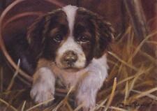 Springer Spaniel  Puppy Dog Pup Litter Animal Art Painting Birthday Card