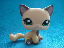 ORIGINAL Littlest Pet Shop  Short Hair Cat  # 2037 Shipping with Polish