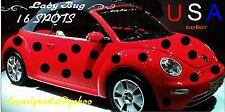 CAR SPOTS DOTS 16 set 6 inch LADYBUG volkswagen decal bug BONUS sun shade tint