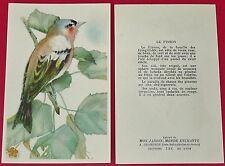 1955-1960 CHROMO GRANDE IMAGE ECOLE BON-POINT OISEAUX PINSON BIRDS