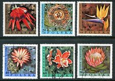 Poland Stamps  Scott #1577-1582 Exotic Flowers 1966