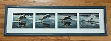 Thomas D Mangelsen Arctic Summer Polar Bear Series of 4 Photographs Signed