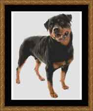 Dog Rottweiler Cross Stitch Kit