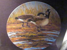Dominion China COURTSHIP Wings Upon The Wind Ducks Donald Pentz  Ltd Ed Plate