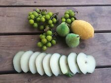 Beaded Artificial FRUIT 7 pc Fake Decor & Rubber sliced Green Apple