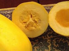 Heirloom PUMPKIN / WINTER SQUASH USA seed mix (15+). Decorative, Spooky & Tasty!