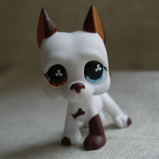 LPS COLLECTION LITTLEST PET SHOP Cream white Great Dane dog RARE TOY 3""