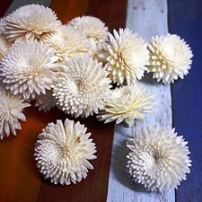 50 Chrysanthemum Balsa Wood Sola Diffuser Flowers 5 cm Dia.for wholesale price