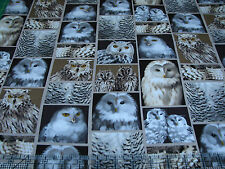 1 Yard Quilt Cotton Fabric - Benartex Kanvas Great North Wilderness Owls Patch