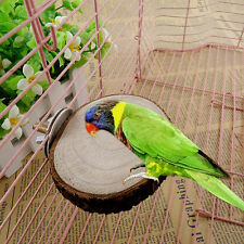 Parrot Pet Bird Round Wooden Hanging Stand Perch Platform Toys Cockatiel Funny