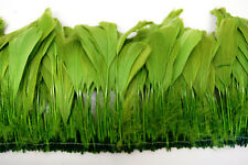 "30 Pcs BURNT COQUE FRINGE - MOSS 8-12"" Tall Feathers Pad"