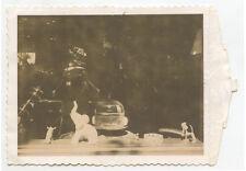 PHOTOGRAPHER W/ CAMERA SHOOTING AN ELEPHANT + BIRD W/ POLAROID ORIG 1950S PHOTO