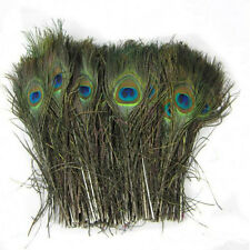 Hot 10X Creative Green Long Natural Peacock Tail Feathers For DIY Bouquet Decor