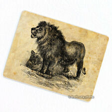 Lion & Lioness Deco Magnet, Decorative Gift Fridge Big Cats Animal Illustration