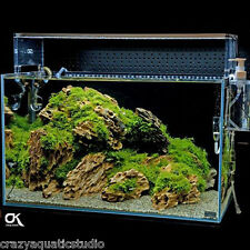 Random pick 11pcs ADA Dragon stone rock aquarium Moss plant shrimp aquascaping