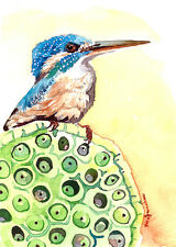 ACEO ORIGINALwatercolor, Bird perch, Kingfisher, Gift idea for bird lovers