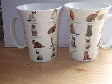 Cat Breeds China Mug