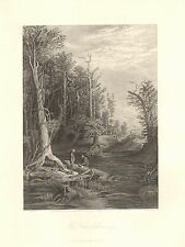 Virginia, The Chickahominy River, Coon Hunters, Vintage 1872 Antique Art Print