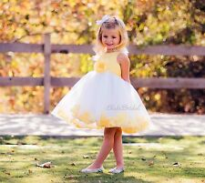 White Flower Girl Dress Rose Petal Junior Bridesmaid Easter Holiday Pageant Kids