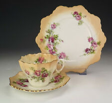 Antique Paragon China - Rose Decorated - Cup Saucer & Tea Plate Trio - Nice!