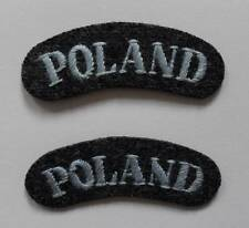 POLISH AIR FORCE BADGES. POLISH AIR FORCE SHOULDER TITLES ( PAIR ).