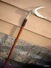 HandMade exotic LEPARD WOOD CANE w/Deer Antler Handle walking/strolling stick